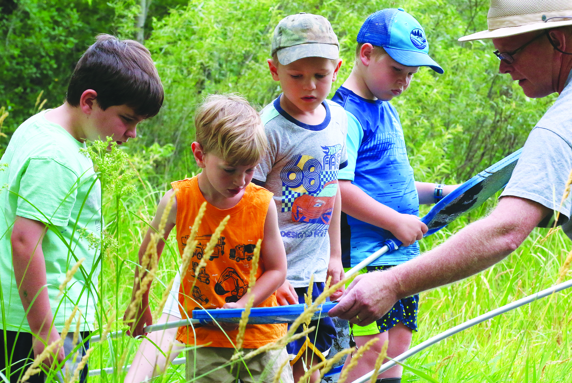 Matthew Briggs, left, August Yogow, Evan Rankin and Jeremiah Hodges survey the bugs, tadpoles and other pond life in a net shared by Navarino Nature Center naturalist Tim Ewing.Carol Ryczek   NEW Media