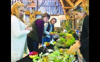 Owner Karen Schairer, right, demonstrates to guests how to create their own take-home pumpkin decorations with a variety of succulents. Guests enjoying a girls night out are, from left, Nicole Melander, Wausau, Megan Olson, Birnamwood, and Cori Soukup, Hatley. The Thursday night event, Sips & Succulents, will take place through Oct. 8 at Schairer's Autumn Acres in Birnamwood. Miriam Nelson   NEW Media