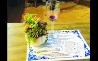 Create your own pumpkin succulent decoration, enjoy some wine and try tasty appetizers at the Sips & Succulents event Thursday nights at Schairer's Autumn Acres in Birnamwood. Miriam Nelson   NEW Media