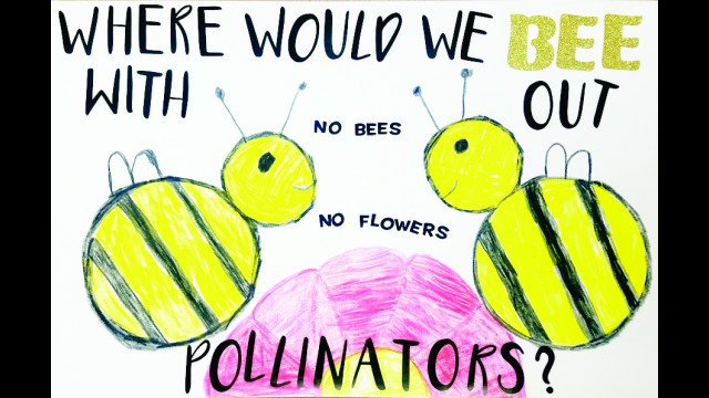 Jack Goers' award winning poster explores where the world would be without pollinators such as honeybees. The poster will go into a state conservation poster contest, which takes place March 4-5.  (Contributed)