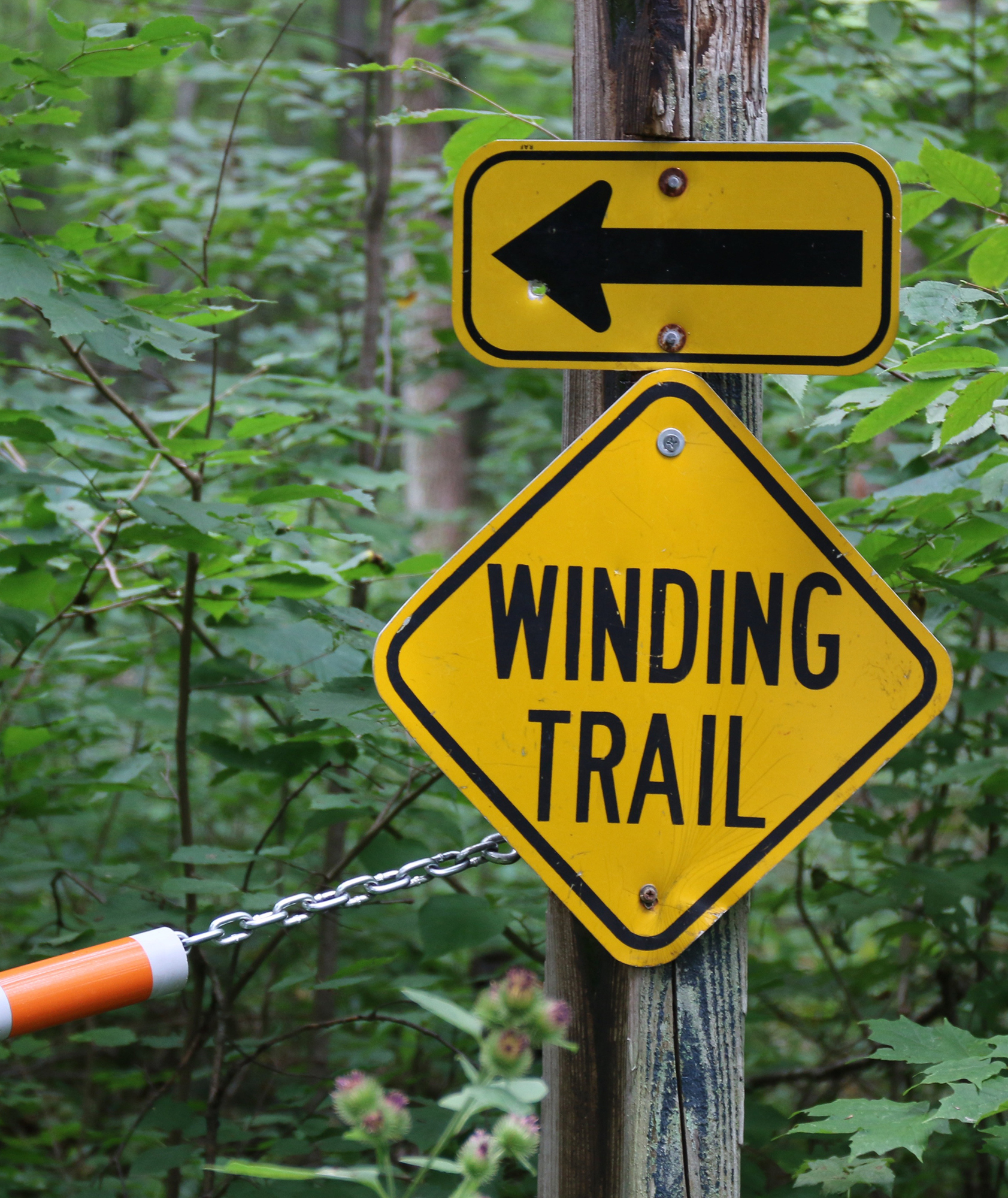 A winding trail, which is open for hiking now and snowmobiling in the winter, does indeed wind through the property. A shorter trail also takes hikers to the creek.